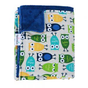 Blankie Blue Owl